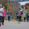 第9回ゆりかもめリレーマラソンの募集を開始!!