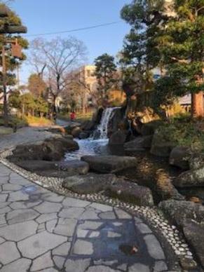 2020年3月22日(日)195回例会「江戸川百景 新川・一之江親水公園を歩く」