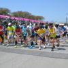4月11日(日)に第2回東京さくらマラソンが開催されました。